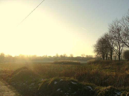 Zimowa łąka #Łąka #słońce #zima #natura #krajobraz