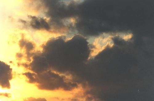 Ciemne chmury nad Daceyville (Sydney), koniec lat dziewięćdziesiątych