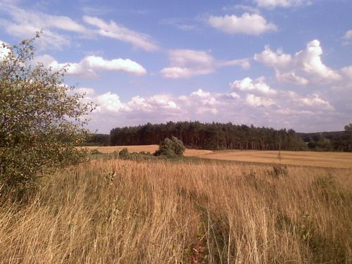 #krajobrazy