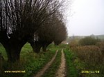 images28.fotosik.pl/292/0a71e8977554918em.jpg
